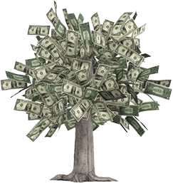real money tree [HOW TO] Make Money in your Underwear